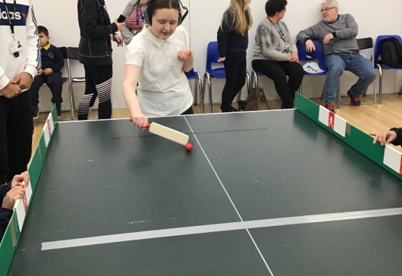 Table Cricket (3)